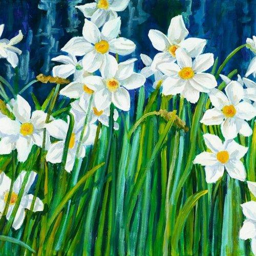 """""""Daffodils"""" - Vojko GASPERUT"""